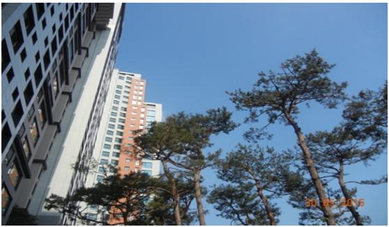 首爾之心的現代化居所